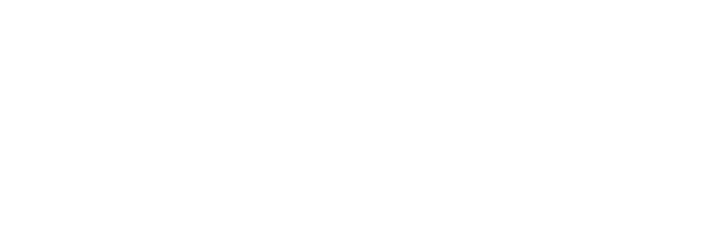 Blue Bamboo Business Consulting logo